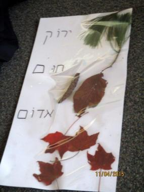Integrating Hebrew into a Fall walk. A collage made from a collection on our walk.
